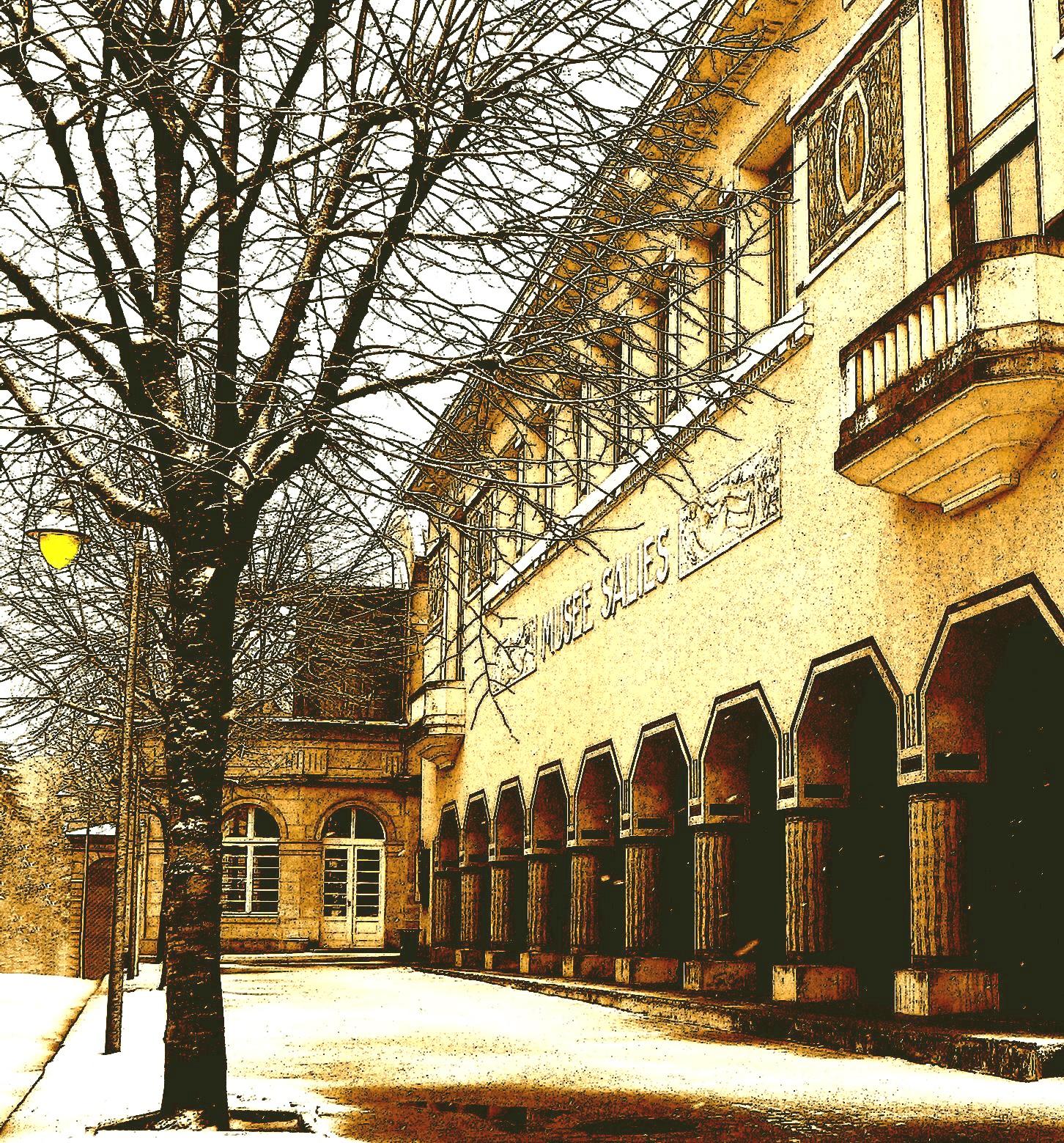 Musée des Beaux-Arts Salies