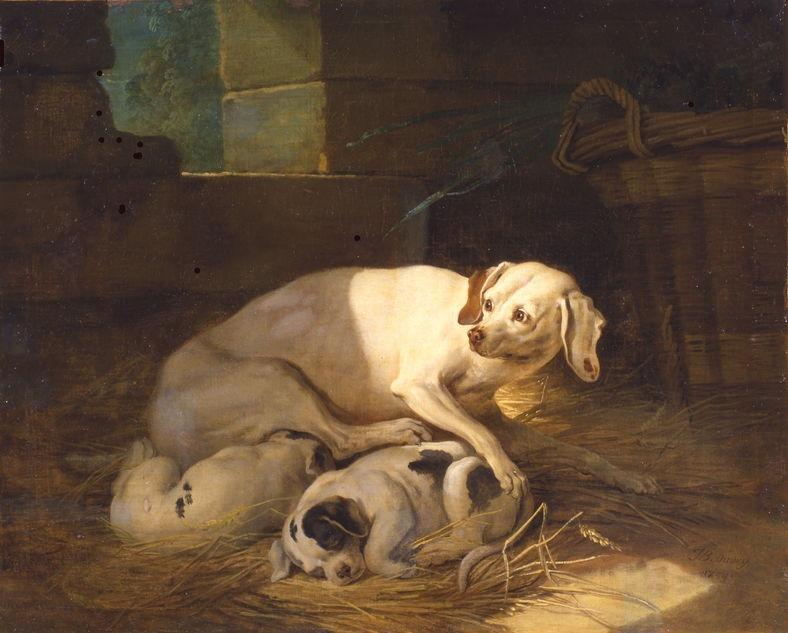 Jean-Baptiste Oudry - Chienne allaitant ses petits
