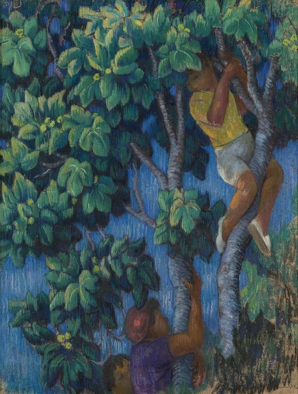 Augustin Hanicotte - Cueillette de figues