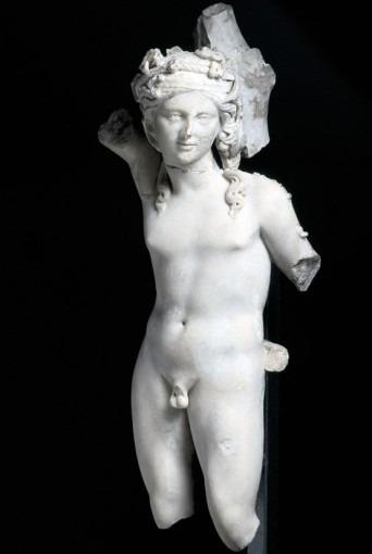 Bacchus adolescent